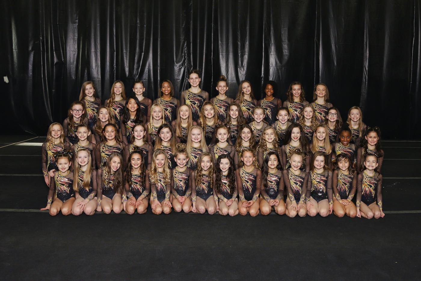 Mount Juliet Elite Gymnastics Team